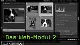 Web-Modul, Lightroom, Flashgalerie, Webgalerie, Webengines