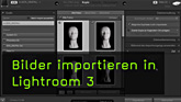 Lightroom 3, Importdialog, RAW, DNG