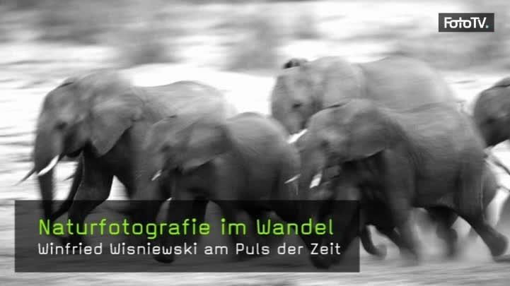Naturfotograf Winfried Wisniewski