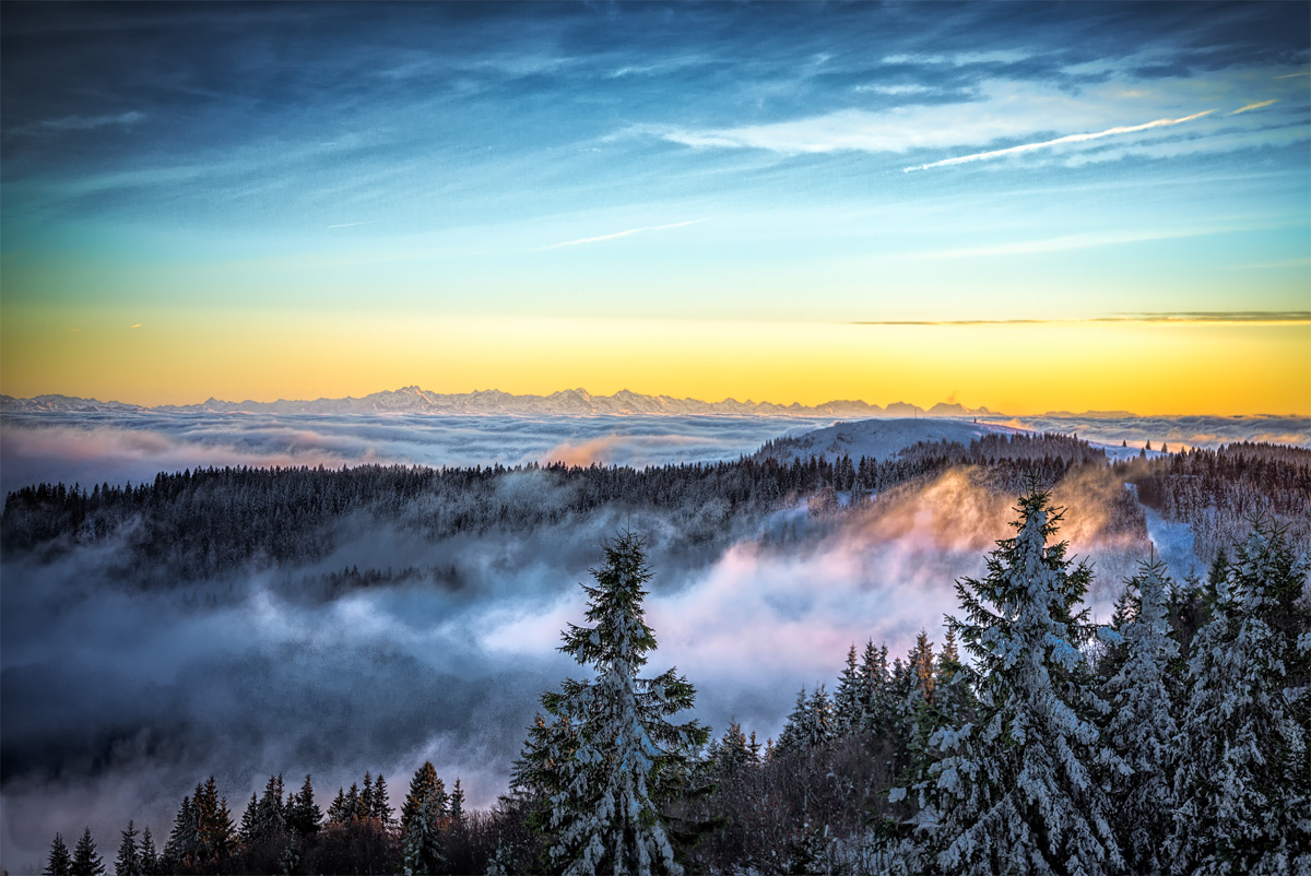 Morgennebel in der Winterlandschaft
