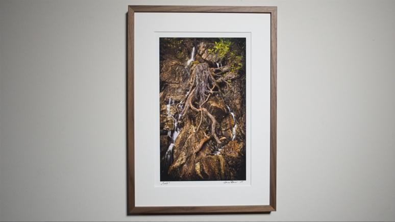Jens FineArt Printing Siegerbild