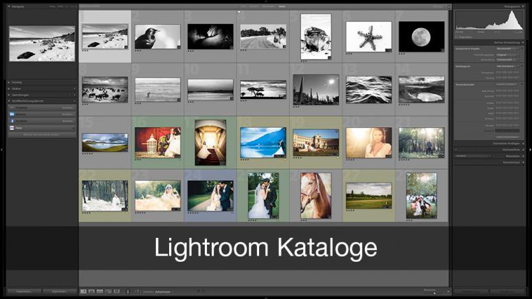 Lightroom Katalog optimal verwenden