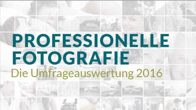 Umfrage zur Berufsfotografie 2016