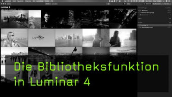 Bilder organisieren mit der Luminar Bibliothek