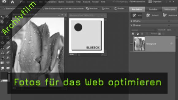 Photoshop Elements speichern Internet JPG GIF