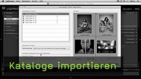 Kataloge importieren