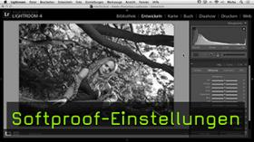 Softproof-Einstellungen