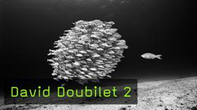 David Doubilet 2