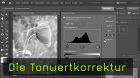 Die Tonwertkorrektur in Photoshop Elements
