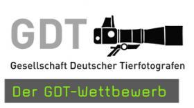 GDT Festival Lünen naturfotografie