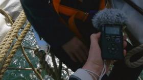 Fieldrecorder im Einsatz - Tonaufnahmen auf dem Segelboot