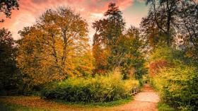 Herbststimmungen fotografieren