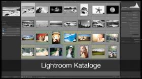Lightroom Katalog optimal verwenden