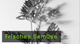 Gemüse fotografieren
