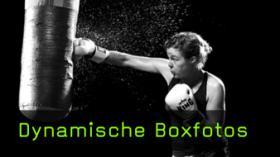 Boxer fotografieren, Boxfotos machen
