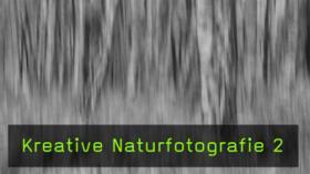 Landschaftsfotografie Waldfotografie Wischer Technik