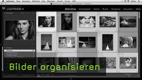 Bilder organisieren