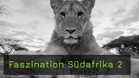 Dirk Bleyer, Fotoreise, Südafrika, Tierfotografie