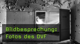 DVF Fotos in der Bildkritik