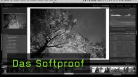 Das Softproof Lightroom CC Tutorial