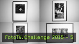 Die Fineart Print- und Rahmungs-Challenge