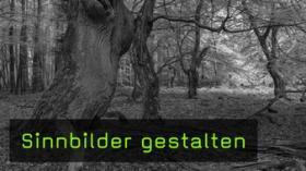 Metaphorische Naturfotografie mit Willi Rolfes