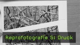 Franz Heinbach zu Kalibrierung, Papier- und Druckerauswahl