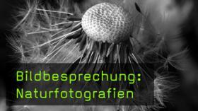 Natur und Landschaften gekonnt fotografieren
