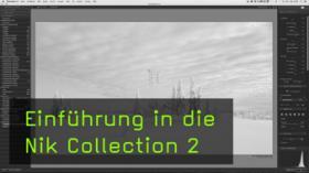 Nik Collection in Photoshop nutzen