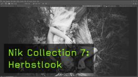 Nik Collection 7: Herbstlook