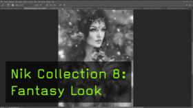 Nik Collection 8: Fantasy Look