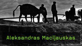 Aleksandras Macijauskas im Interview