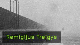 Remigijus Treigys im Interview