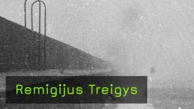 Remigijus Treigys im Interview