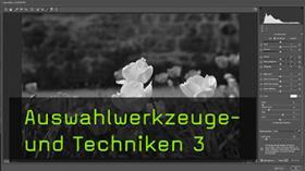 Auswahl- und Maskierungstechniken in Photoshop CC