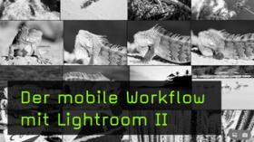 Die Oberfläche von Lightroom CC