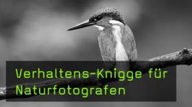 Naturfotograf im Naturschutzgebiet