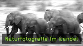 Naturfotografie Winfried Wisniewski