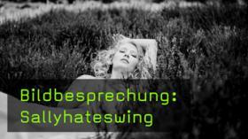 Analyse der Bildgestaltung von Sallyhateswing
