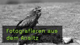 Ansitz-Fotografie