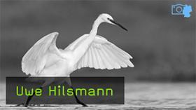 Naturfotograf Uwe Hilsmann im Interview