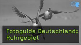 Naturfotografie im Ruhrgebiet