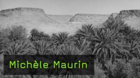 Michèle Maurin - Tönung von SW-Bildern