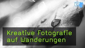 Kreative Naturfotografie im Nationalpark Eifel
