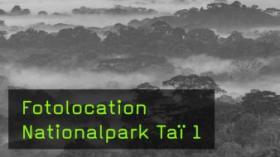 Fotolocations für die Wildlife-Fotografie
