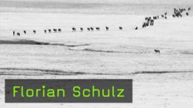 Yellowstone to Yukon: Freedom to Roam, Florian Schulz