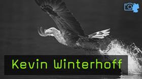 Kevin Winterhoff Naturfotografie Feldberger Seenlandschaft