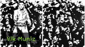 Interview mit Vik Muniz