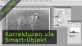 Korrekturen via Smart-Objekt