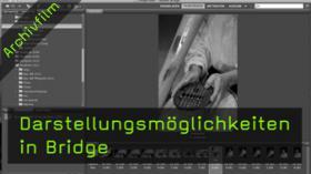 Einführung in Bridge, Bridge für Anfänger